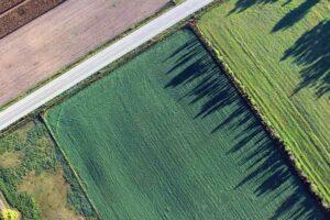 quanto costa un ettaro terreno agricolo