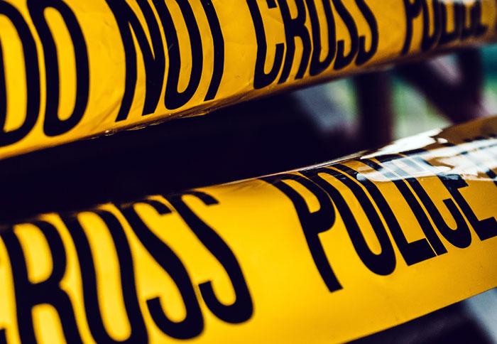 serie criminologiche famose